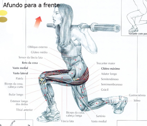 Agachamento afundo pra que serve toda em forma for Exercicio para interno de coxa